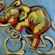 Elephas Maximus On A Bicycle Art Print