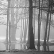 Ellacoya Fog - January Thaw Art Print