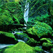 Elowah Falls 4 Columbia River Gorge National Scenic Area Oregon Art Print