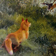 Eluding The Fox Art Print