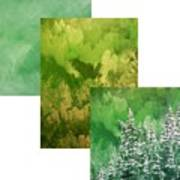 Emerald Valley Wip Art Print