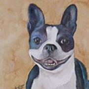 Emma The Boston Terrier Art Print
