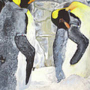 Emperors Of The Antarctic Art Print