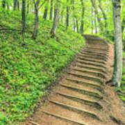 Empire Bluffs Trail Steps In Michigan Art Print