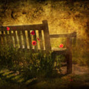 Empty Bench And Poppies Art Print