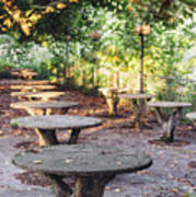 Empty Picnic Tables In The Early Fall With Fallen Leaves Art Print