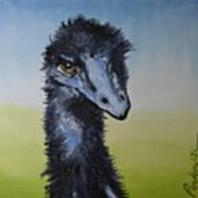 Emu 2 Art Print