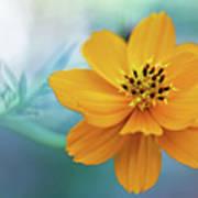 Enchanted Flower Art Print