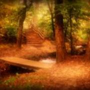 Enchanted Path - Allaire State Park Art Print