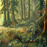 Enchanted Rain Forest Art Print