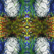 Enchantment Of The Collective Evolution #1507 Art Print