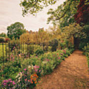 England - Country Garden And Flowers Art Print