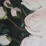 Englische Rosen Art Print