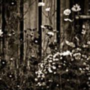 English Garden Noir Art Print