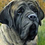 English Mastiff Black Face Print by Dottie Dracos
