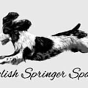 English Springer Spaniel Art Print