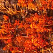 Enigma Orange Art Print