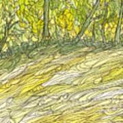 Eno River 34 Art Print