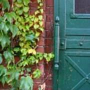 Enter Vine Door Art Print