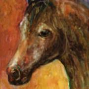 Equine Horse Painting  Art Print