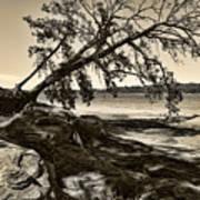 Erosion - Anselized Art Print