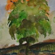 Esoteric Tree Art Print
