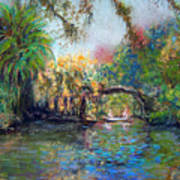Estero River At Koreshan Art Print