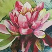 Eureka Springs Lily Art Print
