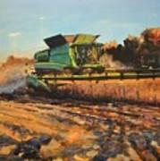 Evening Harvest Art Print