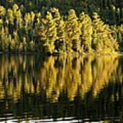 Evening Reflections On Alder Lake Art Print