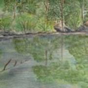 Evening Shadows-oconee State Park Art Print