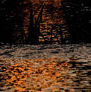 Evening Sun On Small River Art Print