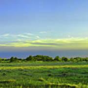 Everglades Panorama  Art Print