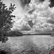 Everglades Lake - 0278abw Art Print