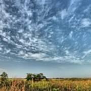 Everglades Sky Art Print