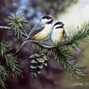 Evergreen Chickadees Art Print