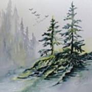 Evergreens In The Mist Art Print