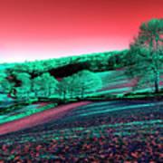 Exmoor In The Pink Art Print