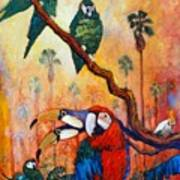 Exotic Birds Of South America  Art Print