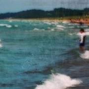 Exploring The Beach Art Print