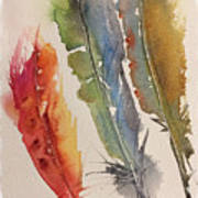 Feather Expressions Art Print