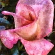 Exquisite Pink Art Print