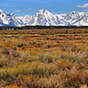 Extended Willow Flats Panorama Art Print