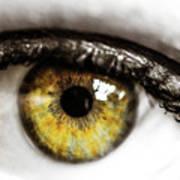 Eye Macro3 Art Print