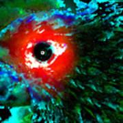 Eye Of Paradise Art Print