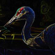 Eye Of The Crane Art Print