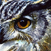 Eyes Of Owls No.25 Art Print