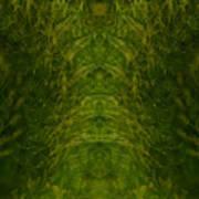 Eyes Of The Garden-2 Art Print