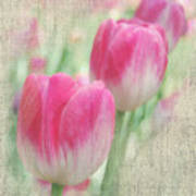 Faded Floral 8 Art Print