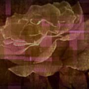 Faded Rose Art Print